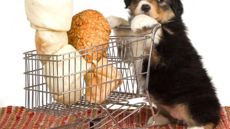 Mercado Pet aquece economia brasileira