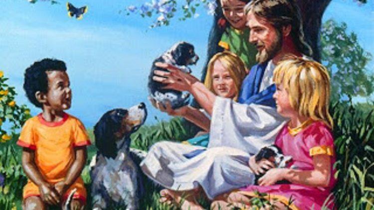 A espiritualidade dos animais domésticos